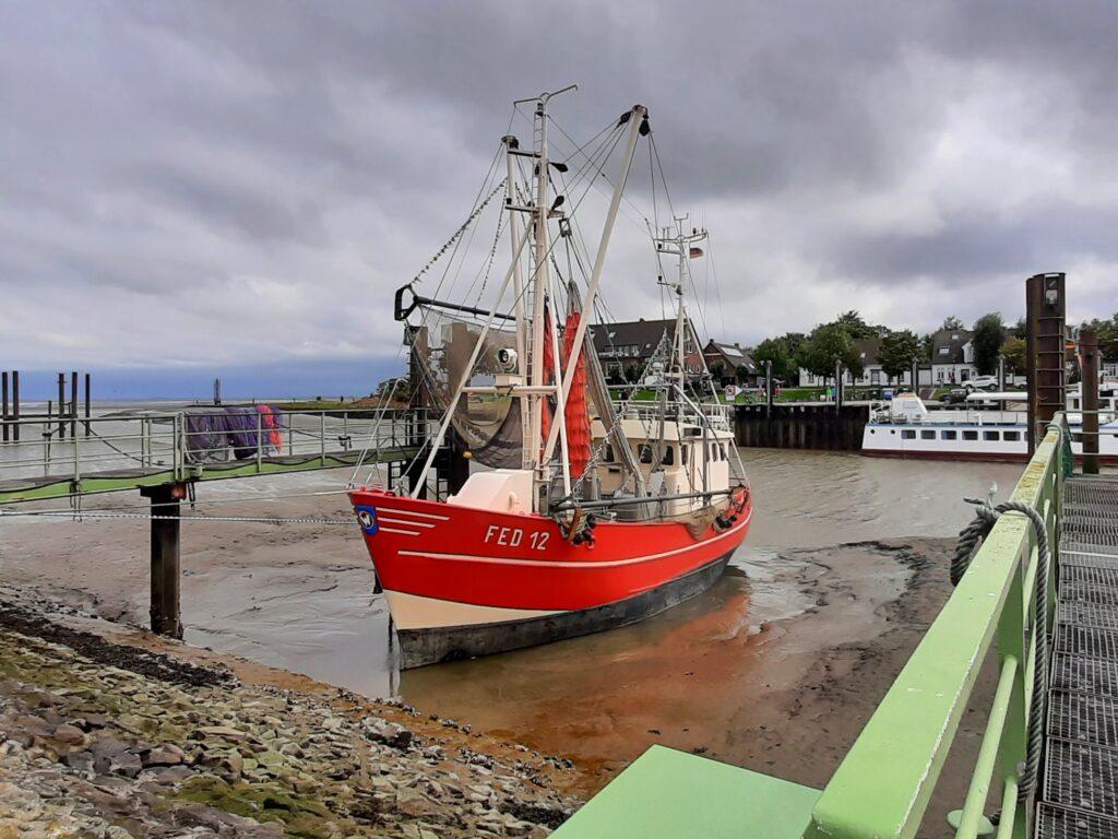 Fischkutter sorgt jeden Tag für leckere Fischbrötchen